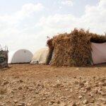 Immagini della vita della popolazione di Şırnak nelle tende